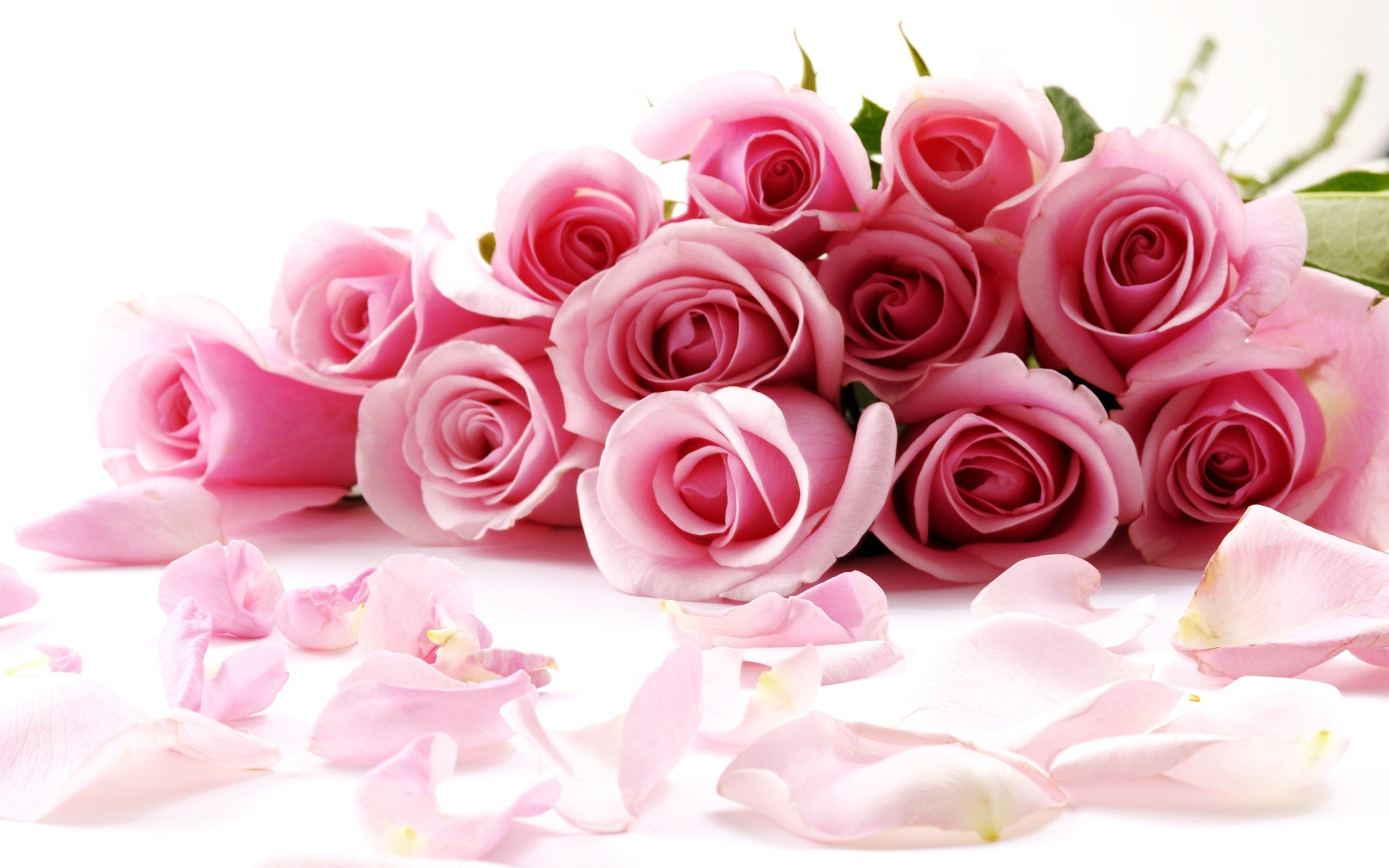 Valentines day gift ideas for her beauty bloggers valentines day roses izmirmasajfo